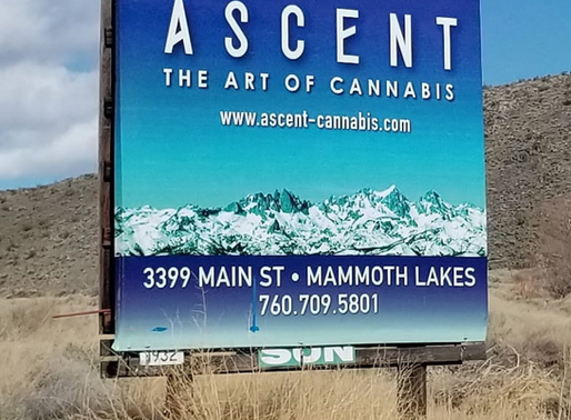 Find MJS at Ascent in Mammoth Lakes, Ca