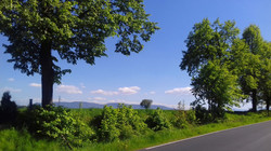 w drodze (3)