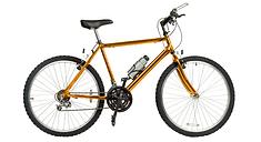 or Bike