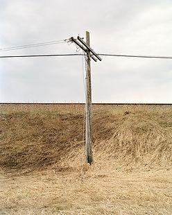 Denis Rioux_Herbes et poteau.jpg