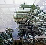 001_Forest_Serre_01.jpg