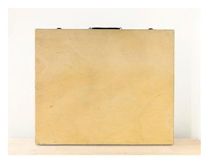 2DRioux Sans-titre (valise) 1200p.jpg
