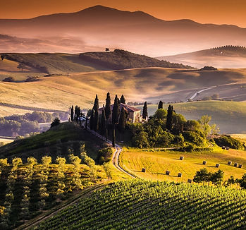 tuscany-wine-wallpaper-4.jpg