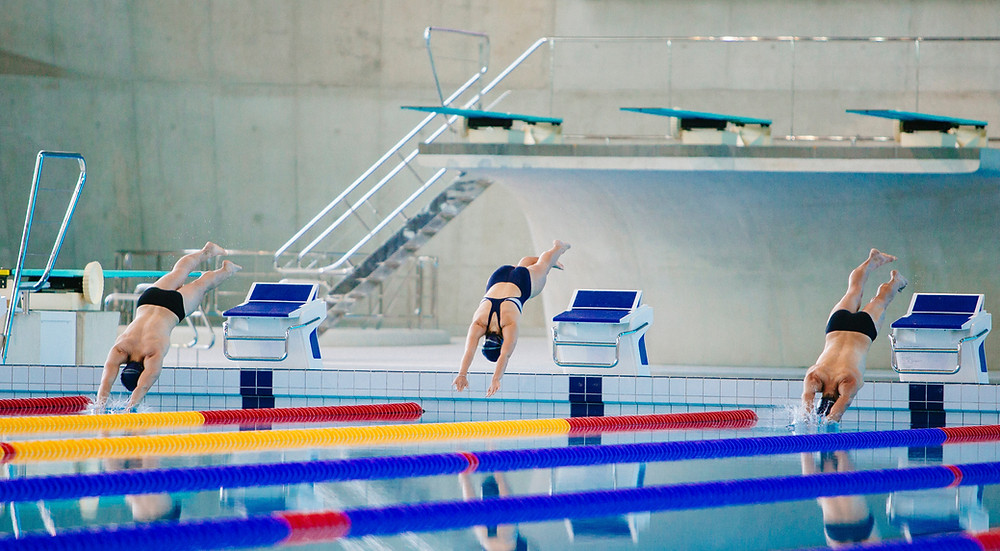 swimmers diving off blocks