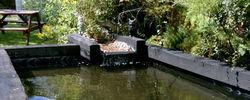 pond Surrey