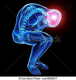 cecile_anatomie-cerveau-mâle-douleur-noi