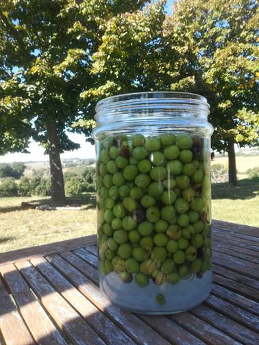 Olive in salamoia.jpg