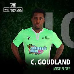 Goudland.jpg