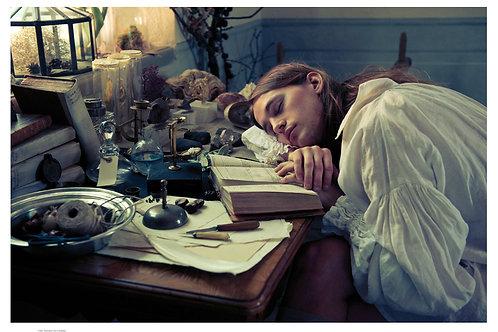 Sleeping Linnaeus
