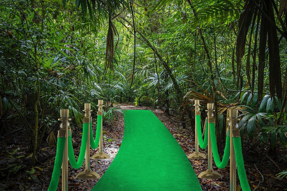 djungel-utkast.jpg