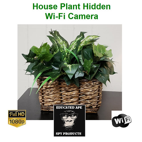 House Plant Hidden Wi-Fi Camera - 1080P