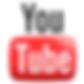 Spy Shop Videos
