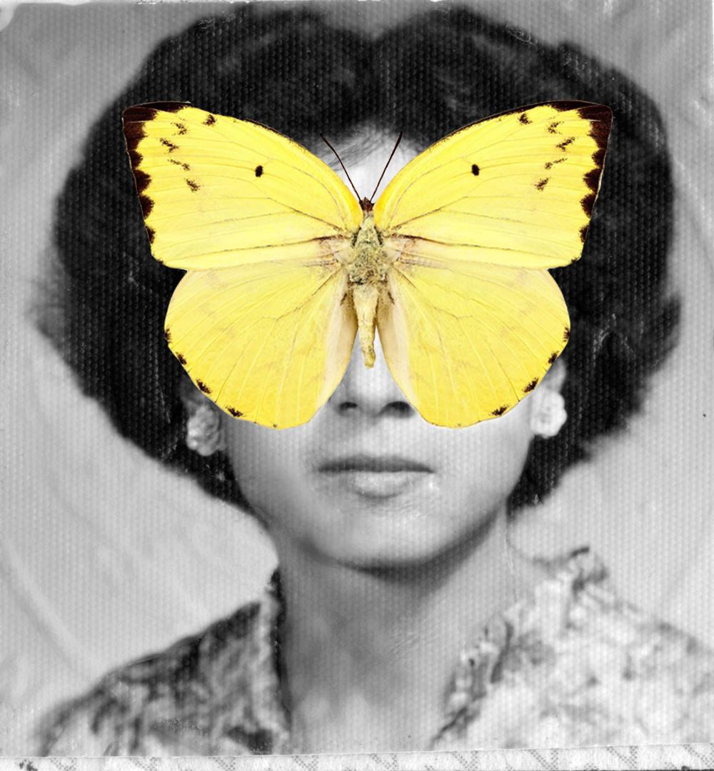Sarah_May_the_Lemon_Immigrant.jpg