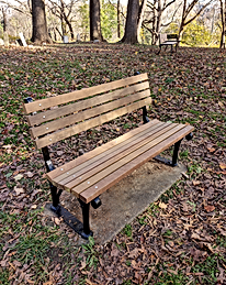 Bench After Restoration.png