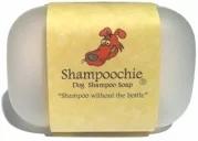 shampoochie.webp