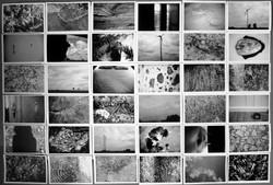 Facebook - my photographic sketches .jpg.jpg work in progress.jpg.jpg.jpg the se