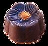 Nakamura Chocolates - Wood Berries