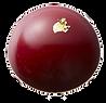 Nakamura Chocolates - Scarlet Rose.png
