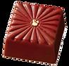 Nakamura Chocolates - Yuzu & Thyme.png