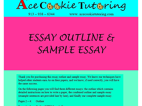 Essay Outline AND Sample Essay
