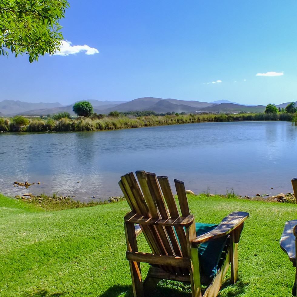 Springfield Winery Estate, Robertson, South Africa