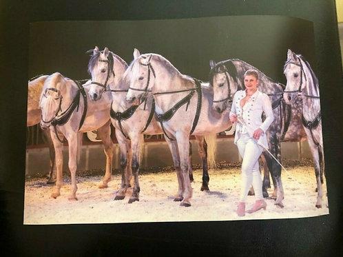 Poster Stephanie mit Pferden
