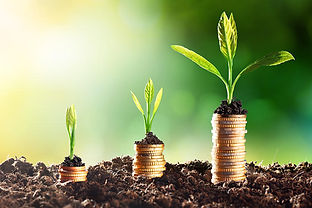growth_money_time_plants-100695563-large