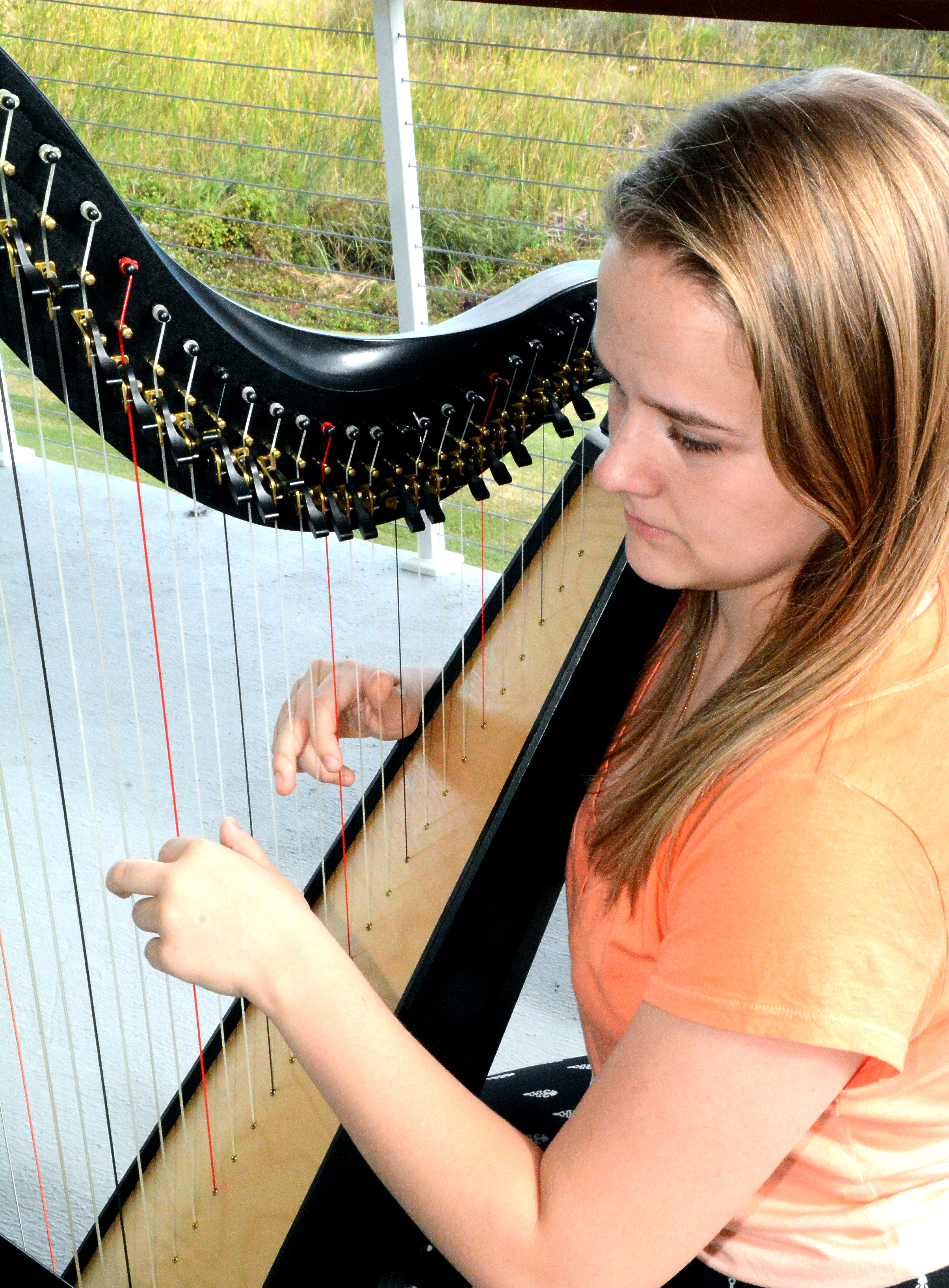Coastal CarolinaHarp Chapter Shelby Foun