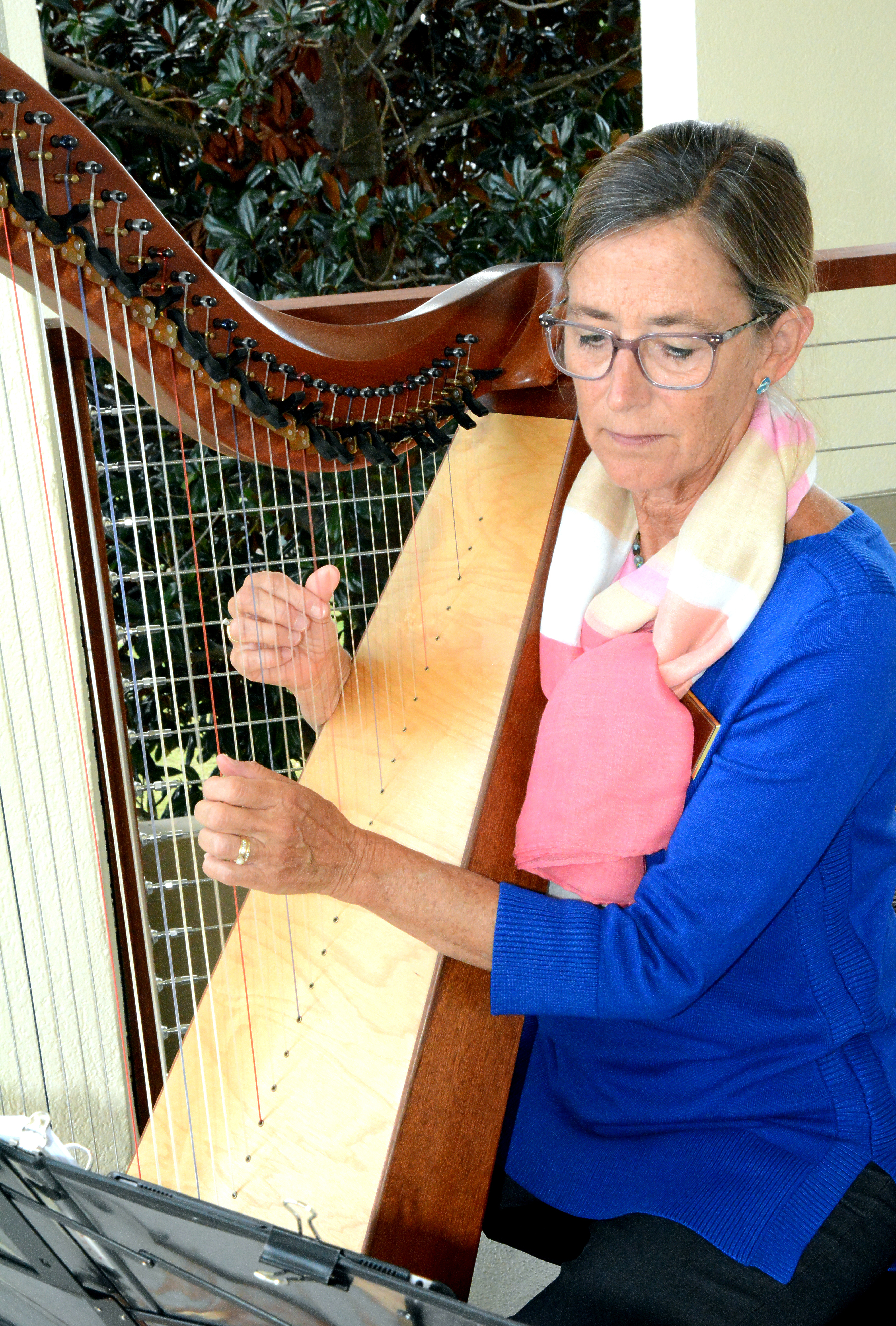 Coastal CarolinaHarp Chapter Susan C Fou