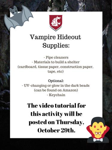 Vampire Hideout