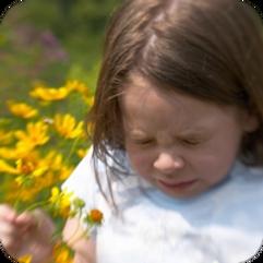 allergies chiropractic care