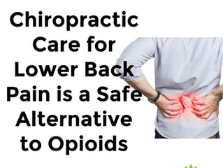 Chiropractic Care for Lower Back Pain is a Safe Alternative to Opioids