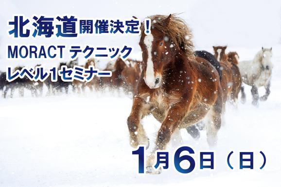 北海道開催決定!
