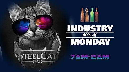 Steel Cat sin.jpg