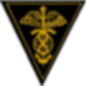Pledge Pin_color_png.png