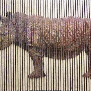 Rhinocéros - SEOCK