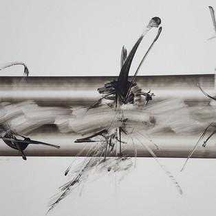 Ian LEE Untitled iwn16300-2016 -acrylique sur toile 55x80cm 3500€