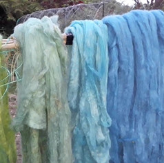 Rainbow of plant-dyed fleece by Jenny
