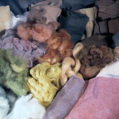 'Bushcraft dyeing'