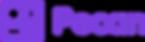 5e1db5c0d41c8312a7d4e58b_Pecan_Logo - Zo