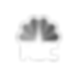 Trendgroup_Clients-Trnsp_NBC logo.png