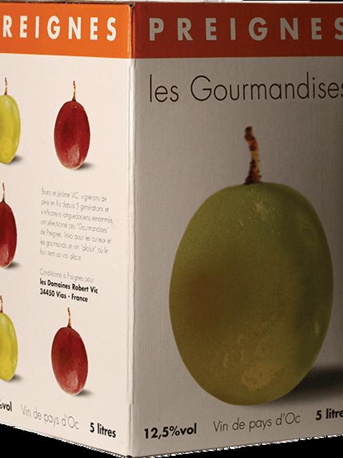 GOURMANDISES - ROUGE 10L - PREIGNE LE VIEUX