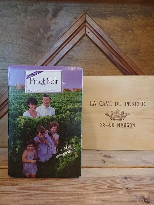 PINOT NOIR - CUBI DE 5L - DOMAINE DENIS BARDON
