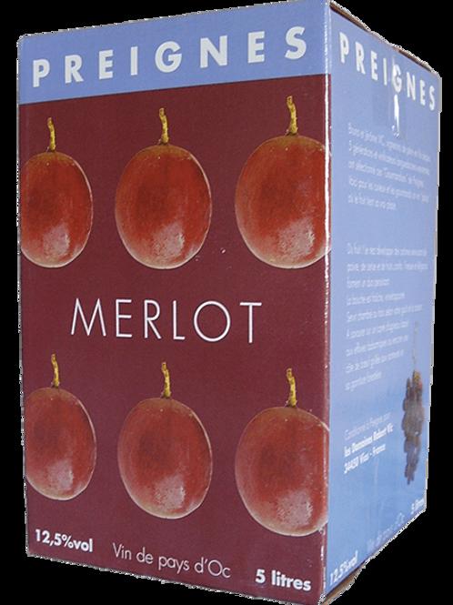 MERLOT - CUBI DE 5L - PREIGNE LE VIEUX
