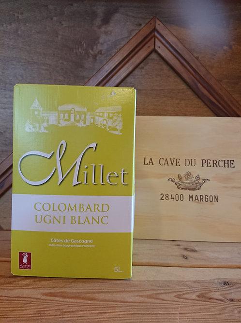 GASCOGNE BLANC - CUBI DE 5L - CHATEAU DE MILLET
