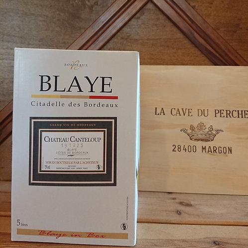 COTES DE BLAYE - CUBI 5L - CHATEAU CANTELOUP