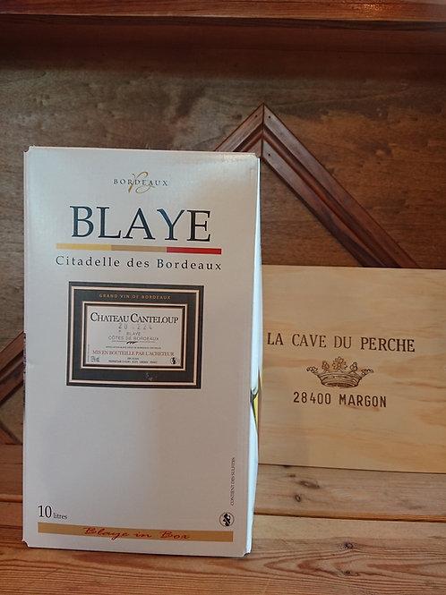 COTES DE BLAYE - CUBI DE 10L - CHATEAU CANTELOUP
