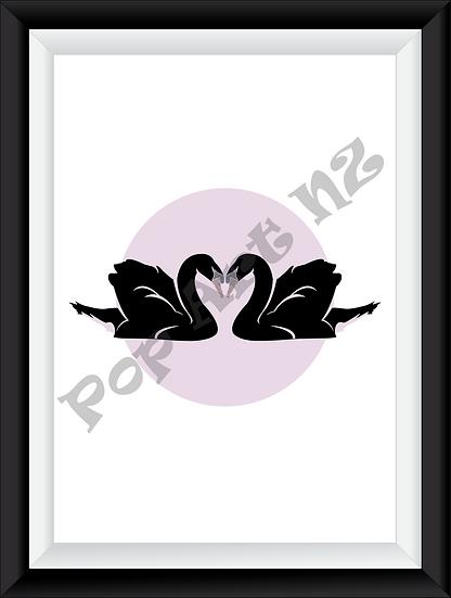 Limited edition Love Swans - Black Blush