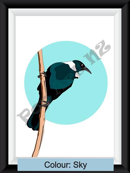 Limited edition native Tui bird NZ - various colours