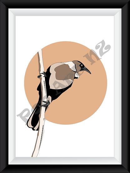 Limited edition Native New Zealand Tui bird - Latte